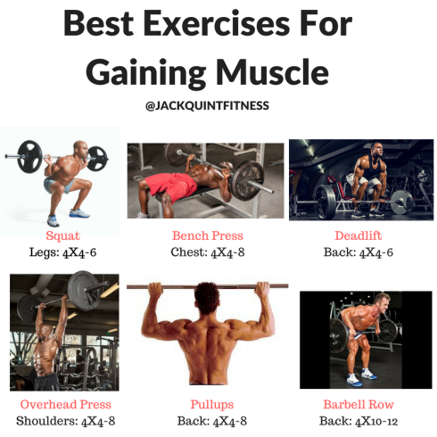 Best Exercises For MASS.png
